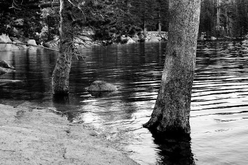 Yosemite2011June-092