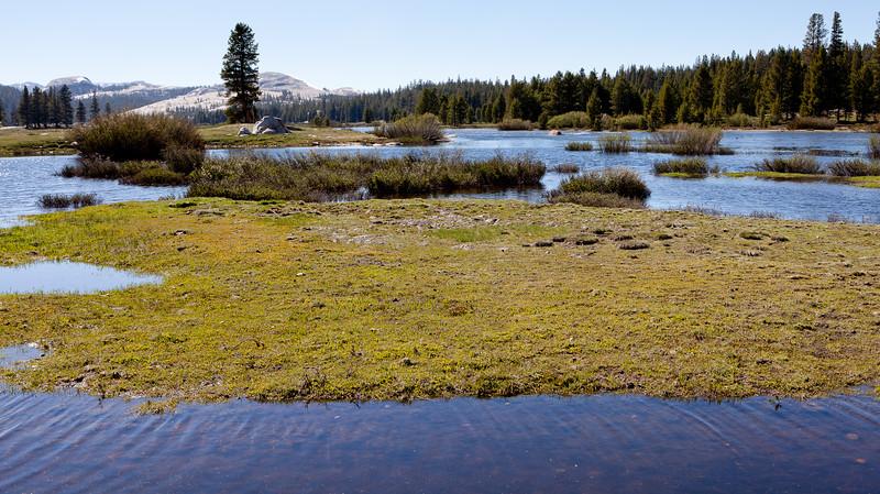 Yosemite2011June-075