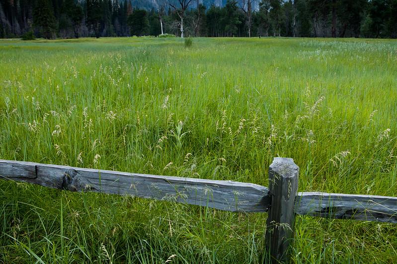 Yosemite2011June-180