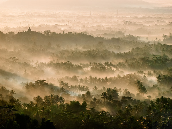 Borobodur Temple in the jungle - Java, Indonesia