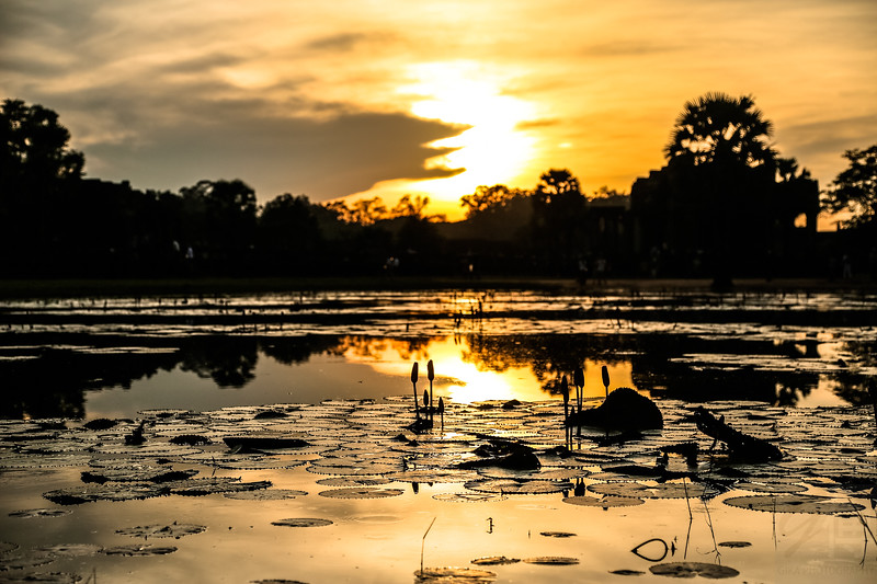 Lake in Angkor - Cambodja
