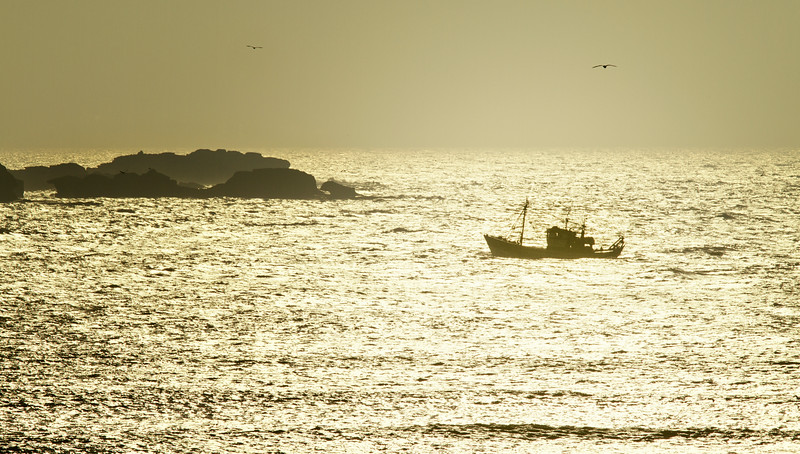 Essaouira - Atlantic