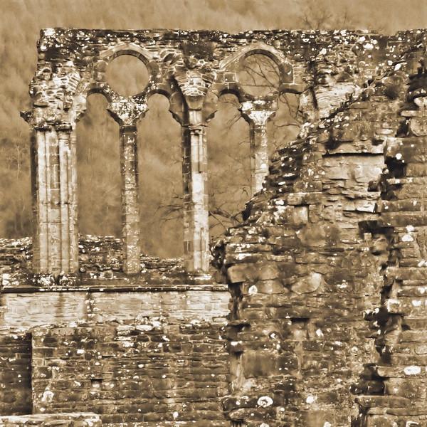 Tintern Abbey~3627-2sq.