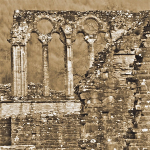 Tintern Abbey~3627-2sq.