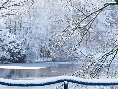 Amsterdamse Bos, Holland