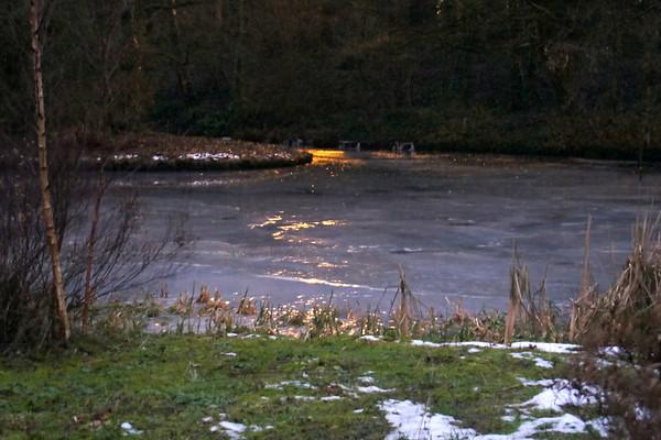 2010 01 January / Januari
