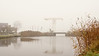 Fog in typical Dutch landscape