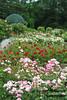 New York Botanical Garden with Mama, Sunday, July 15, 2012