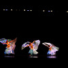 Plainwell Dance 2013 0081_edited-1