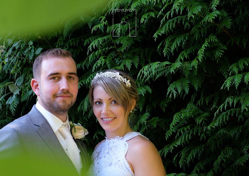 Steve and Terri wedding photo