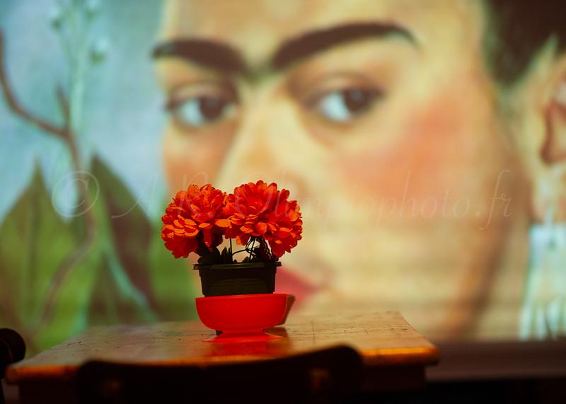 Apérocirque, mise en scène Jordi Aspa