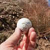 I found this golf ball at the bottom of the canyon. Im not sure where it came from but found it odd to be in this area.