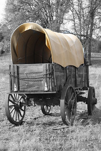 Old Wagon - Catheys Valley, Ca