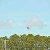 Blue Angels, F-22 Raptor, Aeroshell Acrobatic Team, Wild Horse Aviation Biplane during Wings Over the Golden Isles Airshow on 03-26-17