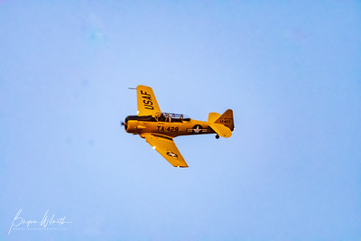 AT-6_Trainer-7526