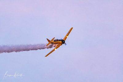 AT-6_Trainer-7356