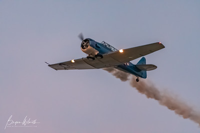 AT-6_Trainer-7314