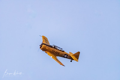AT-6_Trainer-7539
