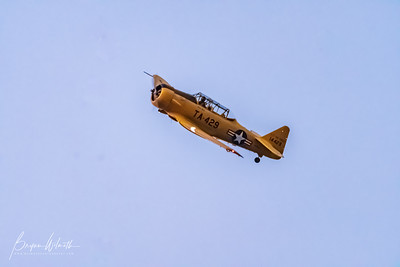 AT-6_Trainer-7544