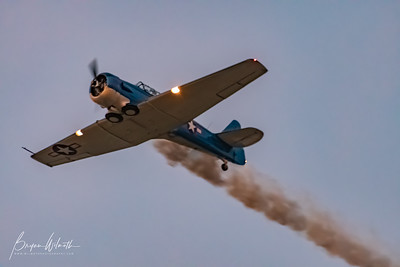 AT-6_Trainer-7319