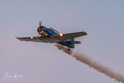 AT-6_Trainer-7311