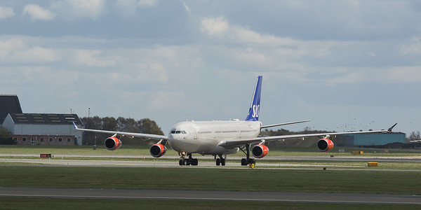 Scandinavian Airlines System Airbus A340-313 OY-KBC  in Kopenhagen/DK.