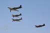 "Hawker Sea Fury FB.11 ""Argonaut""<br /> Yakovlev Yak-3 ""SteadFast""<br /> P-51D Mustang ""Merlins Magic""<br /> P-40 Kittihawk"