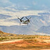 osprey transition
