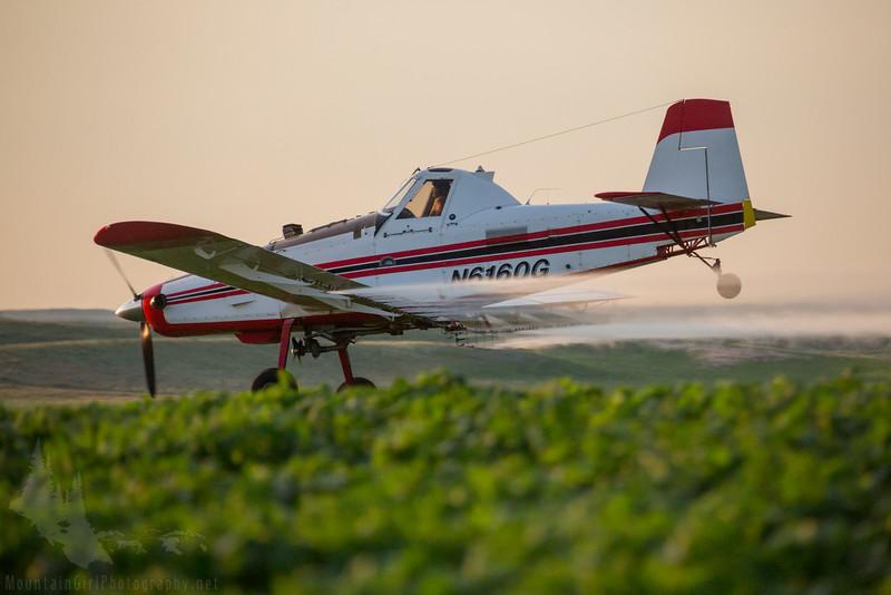 Low Flying in the Fields