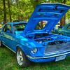 Beautiful Blue Mustang
