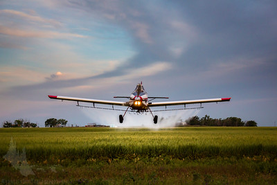 Greg Allen applies treatments to wheat fields near Wray, CO in his Air Tractor 502b.
