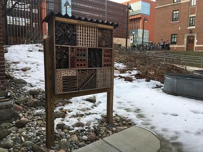 Pollinator box at East Quad