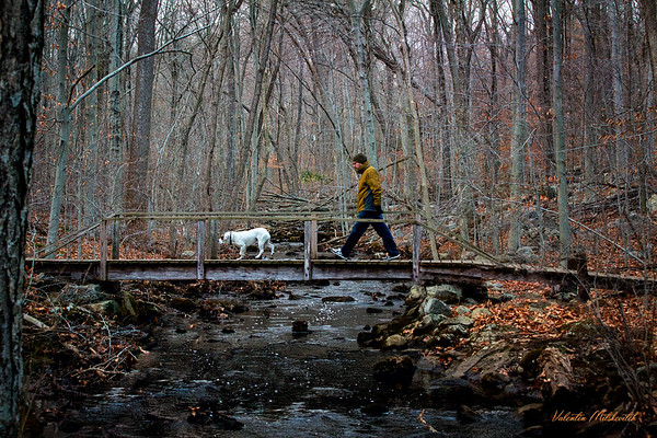 Man and a white dog on a bridge