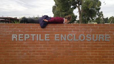 Planking Pics