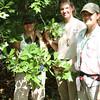"Tiana, Kim, and Keri check the ""Todd Island Oak"""