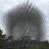 Kew Gardens  06-07-19 0132