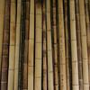 4 Bamboo
