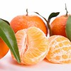 Clementine_Mandarin