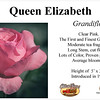 Queen Elizabeth-GF_card