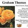 Graham Thomas-EG_card