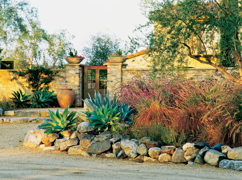 Mediterranean dry garden