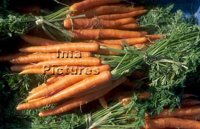 1-32-30-0211 vegetables; groenten; légumes carrots;worltelen;carottes
