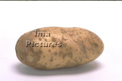 1-32-30 0142 vegetables groenten légumes potatoes aardappelen pommes de terre