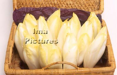 1-32-30 00254 vegetables groenten légumes chiicory witloof chicorée