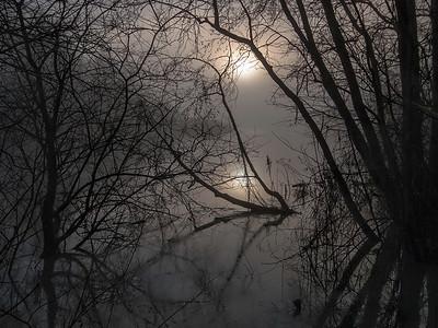 Sol gjennom kratt og tåke Linnesstranda, Lier 31.12.2006 Canon 20D + Sigma 10-20 mm @ 14 mm