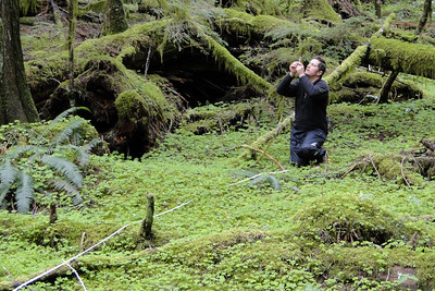 Measuring a big Cedar