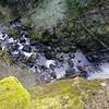 Teal Creek Falls