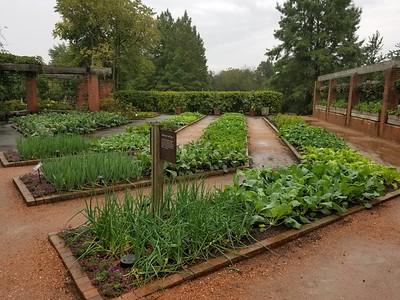 CBC 10-06 01 Vegitable Garden