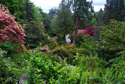 Kubota Garden, Seattle - 2017/05/15