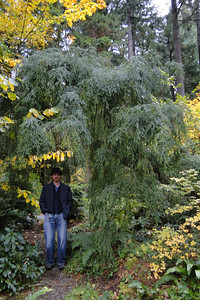 Miller Garden - 2010/11/05